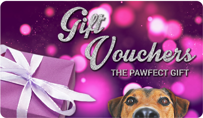 EveryDog Gift Vouchers Make the Perfect Gift
